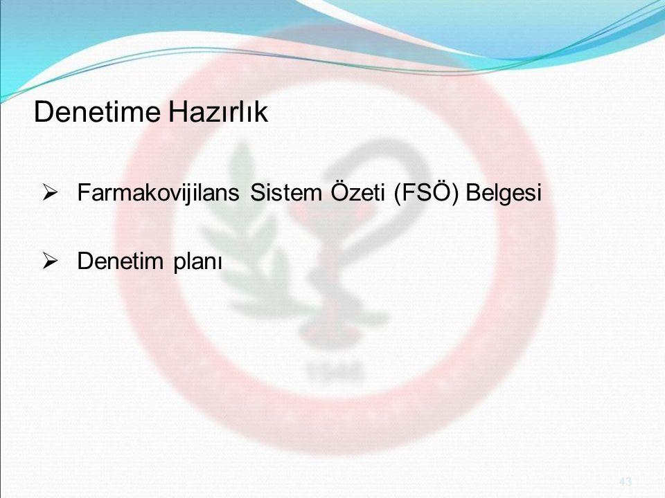 Denetime Hazırlık Farmakovijilans Sistem Özeti (FSÖ) Belgesi