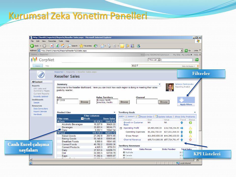 Canlı Excel çalışma sayfaları