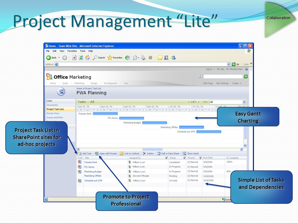 Project Management Lite