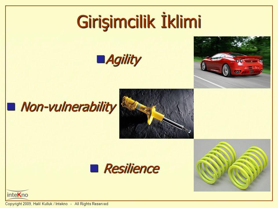 Girişimcilik İklimi Agility Non-vulnerability Resilience