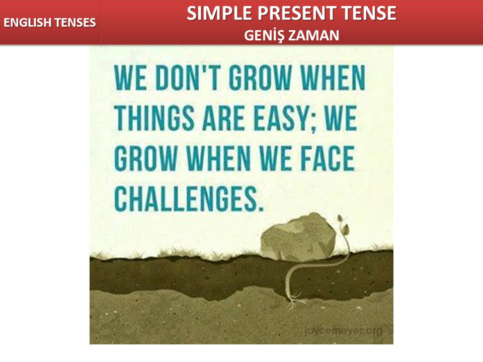 ENGLISH TENSES SIMPLE PRESENT TENSE GENİŞ ZAMAN