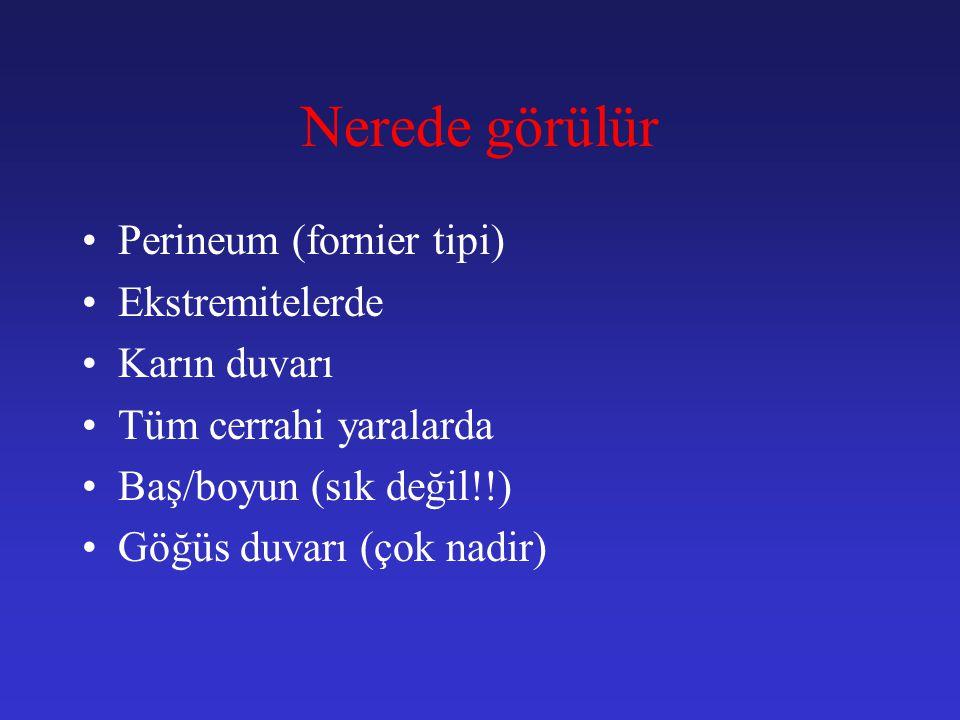 Nerede görülür Perineum (fornier tipi) Ekstremitelerde Karın duvarı