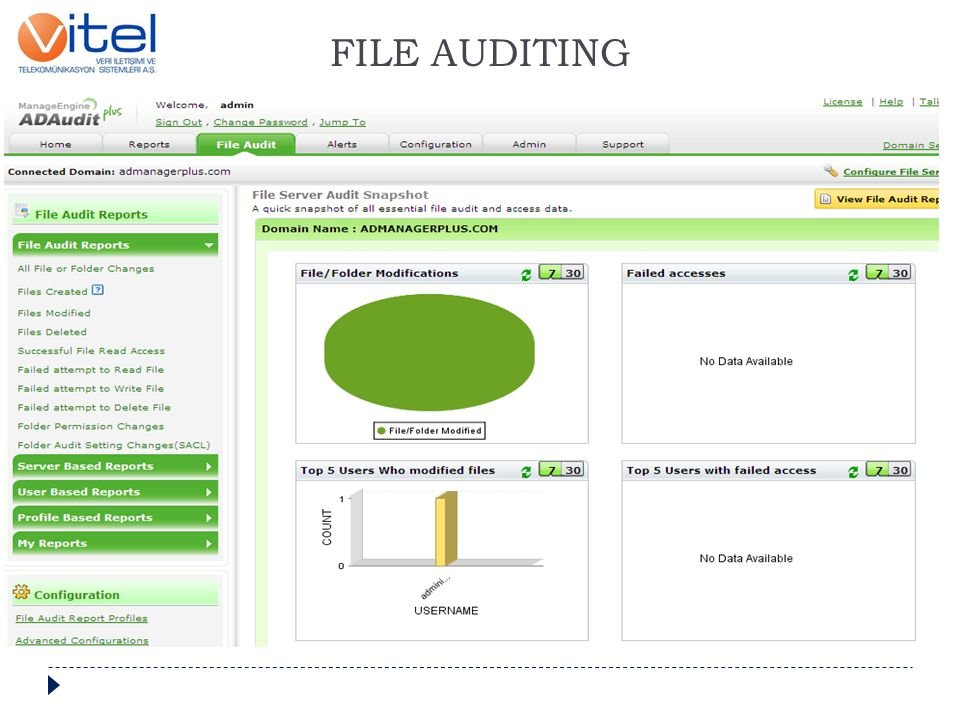 FILE AUDITING