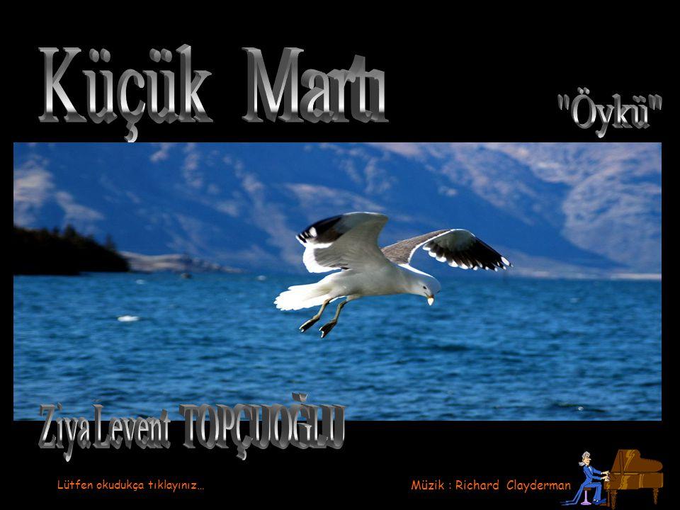 Küçük Martı Ziya Levent TOPÇUOĞLU Öykü Müzik : Richard Clayderman