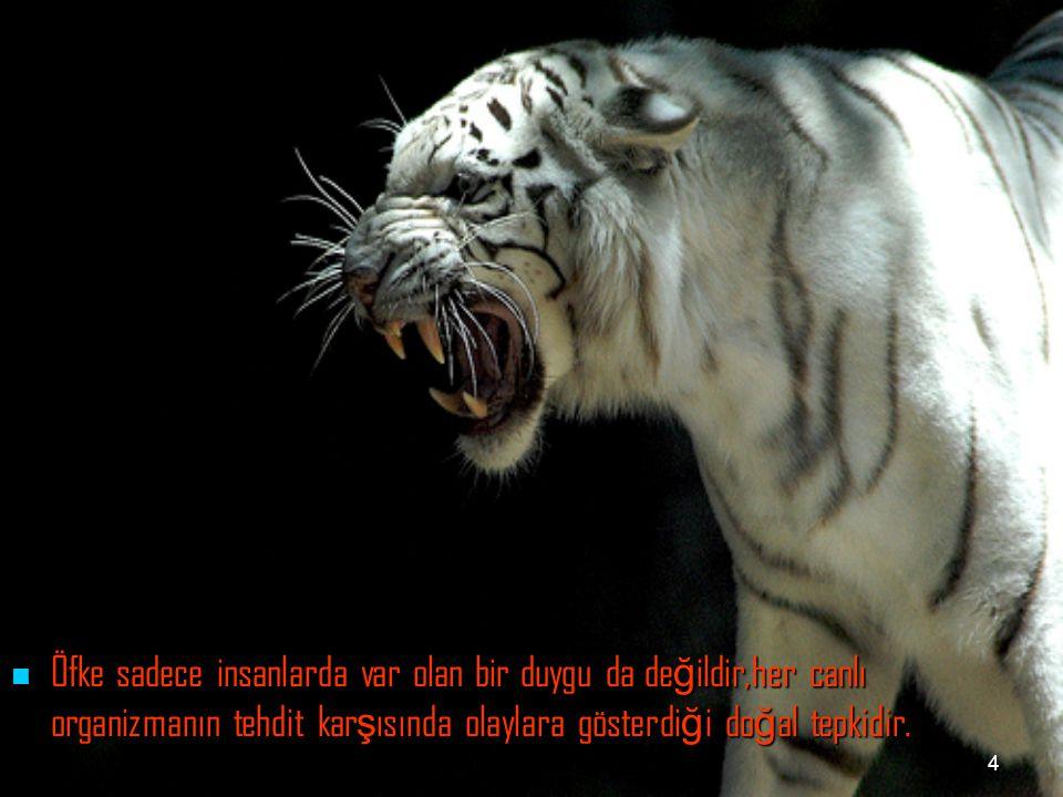 Öfke sadece insanlarda var olan bir duygu da değildir,her canlı organizmanın tehdit karşısında olaylara gösterdiği doğal tepkidir.