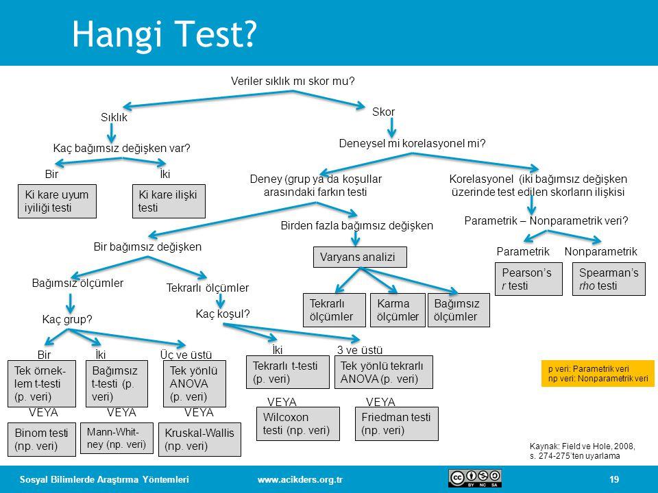 Hangi Test Veriler sıklık mı skor mu Skor Sıklık