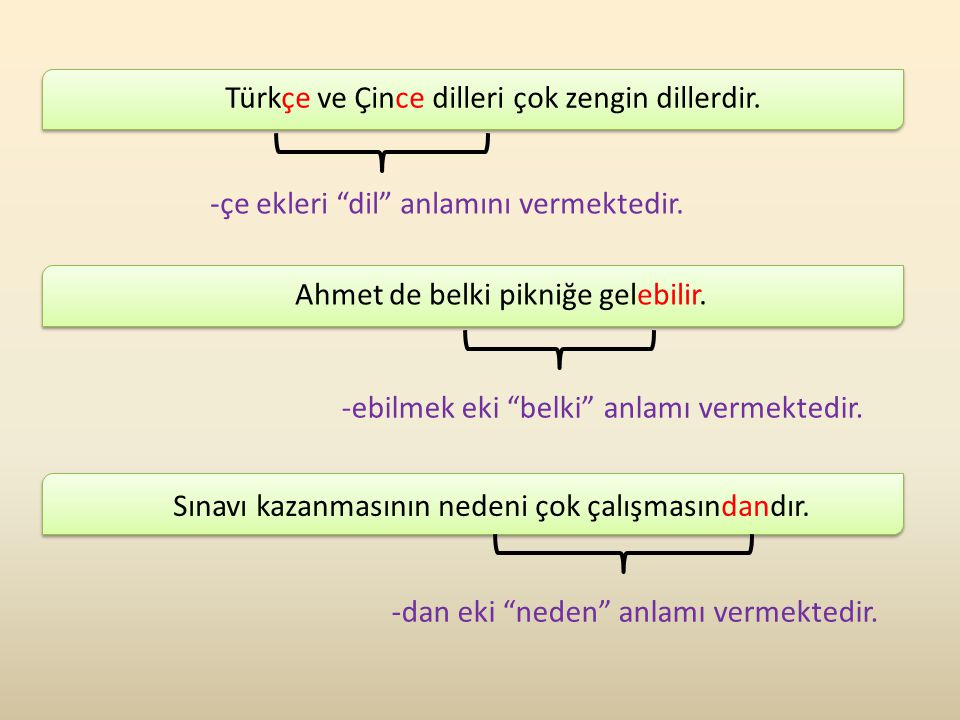 Türkçe ve Çince dilleri çok zengin dillerdir.