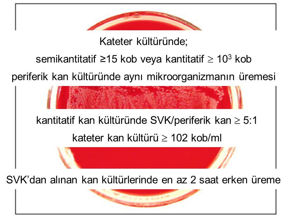 semikantitatif ≥15 kob veya kantitatif  103 kob