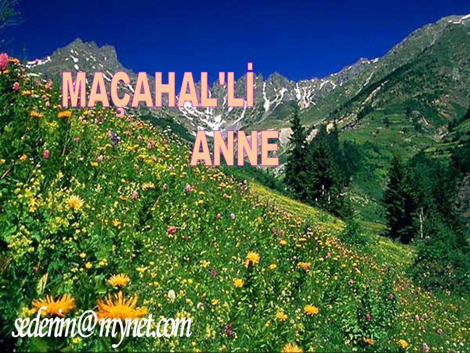 Jos Presenteert MAÇAHAL Lİ ANNE The Best sederim @ mynet.com