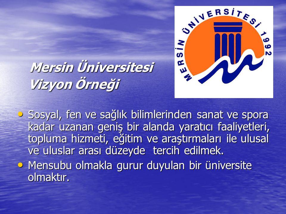 Mersin Üniversitesi Vizyon Örneği