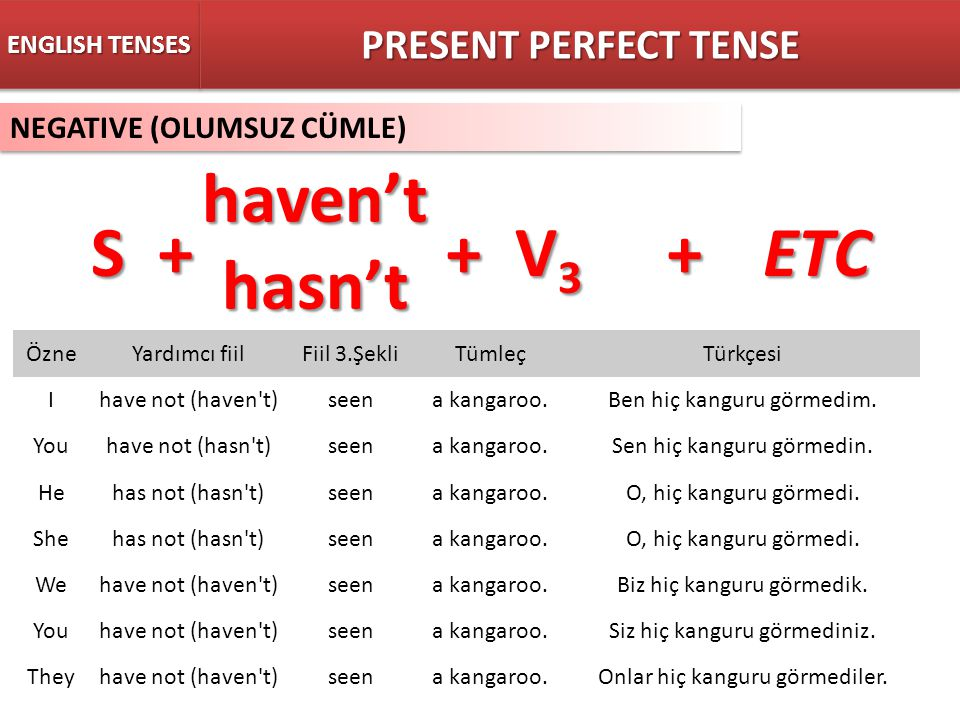 haven't hasn't S + + V3 + ETC PRESENT PERFECT TENSE