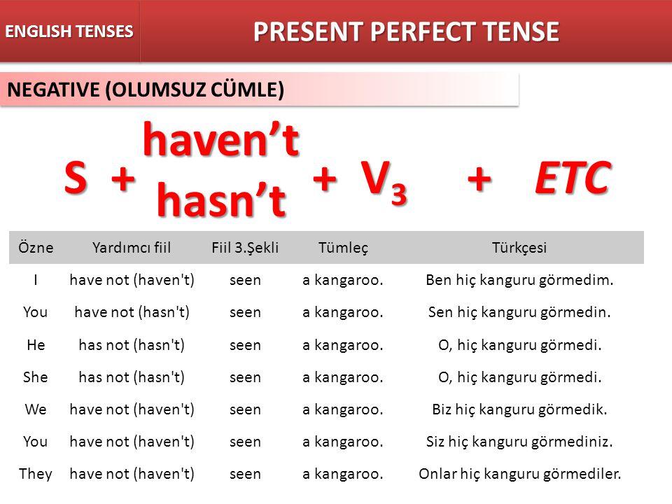 haven't hasn't S + + V3 + ETC PRESENT PERFECT TENSE