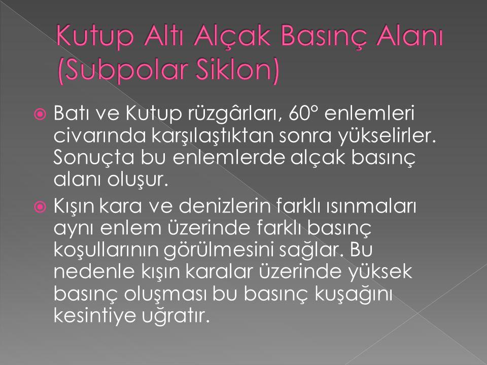 Kutup Altı Alçak Basınç Alanı (Subpolar Siklon)