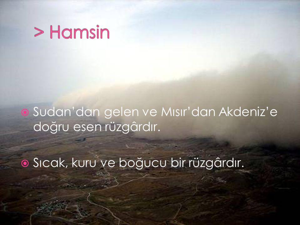 > Hamsin Sudan'dan gelen ve Mısır'dan Akdeniz'e doğru esen rüzgârdır.