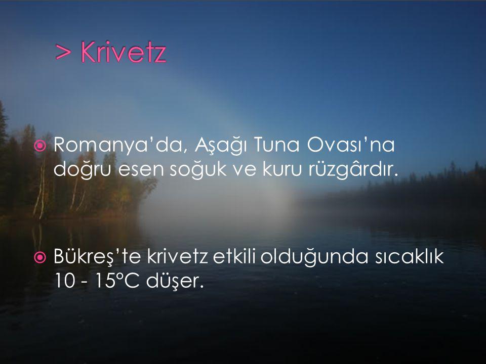 > Krivetz Romanya'da, Aşağı Tuna Ovası'na doğru esen soğuk ve kuru rüzgârdır.