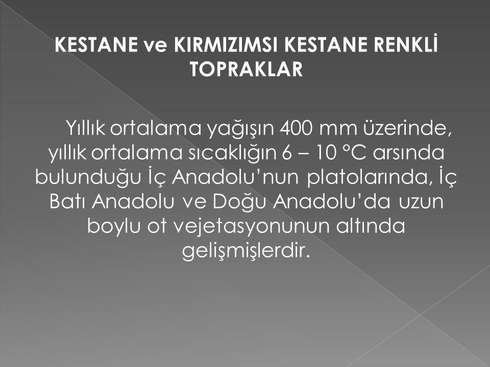 KESTANE ve KIRMIZIMSI KESTANE RENKLİ TOPRAKLAR Yıllık ortalama yağışın 400 mm üzerinde, yıllık ortalama sıcaklığın 6 – 10 °C arsında bulunduğu İç Anadolu'nun platolarında, İç Batı Anadolu ve Doğu Anadolu'da uzun boylu ot vejetasyonunun altında gelişmişlerdir.