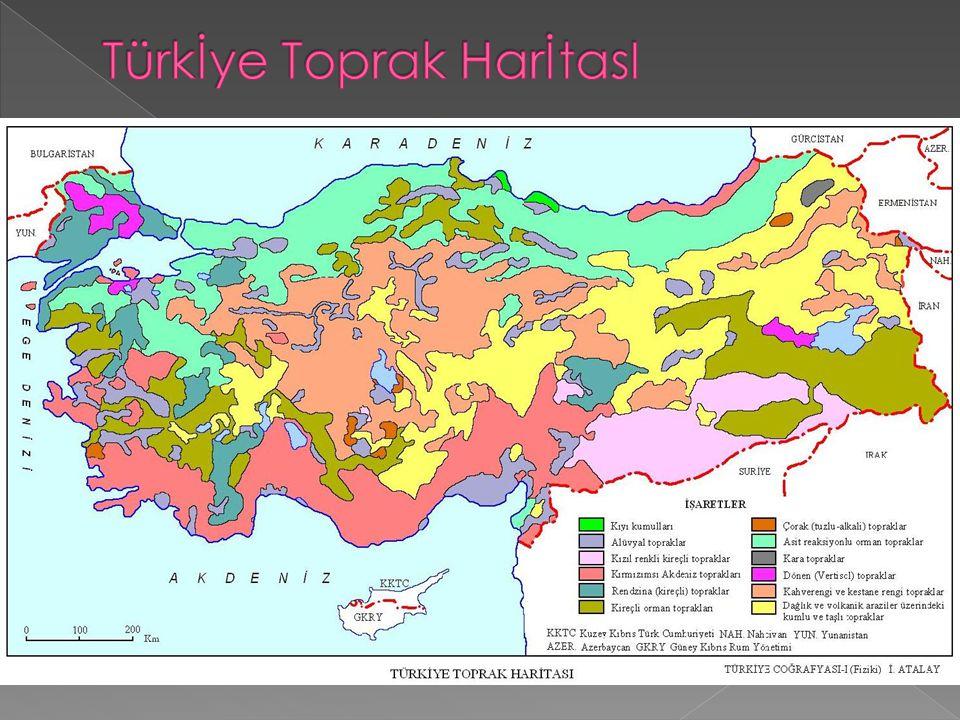 Türkİye Toprak HarİtasI