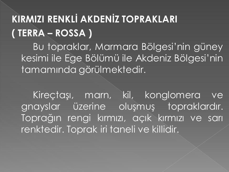 KIRMIZI RENKLİ AKDENİZ TOPRAKLARI ( TERRA – ROSSA ) Bu topraklar, Marmara Bölgesi'nin güney kesimi ile Ege Bölümü ile Akdeniz Bölgesi'nin tamamında görülmektedir.