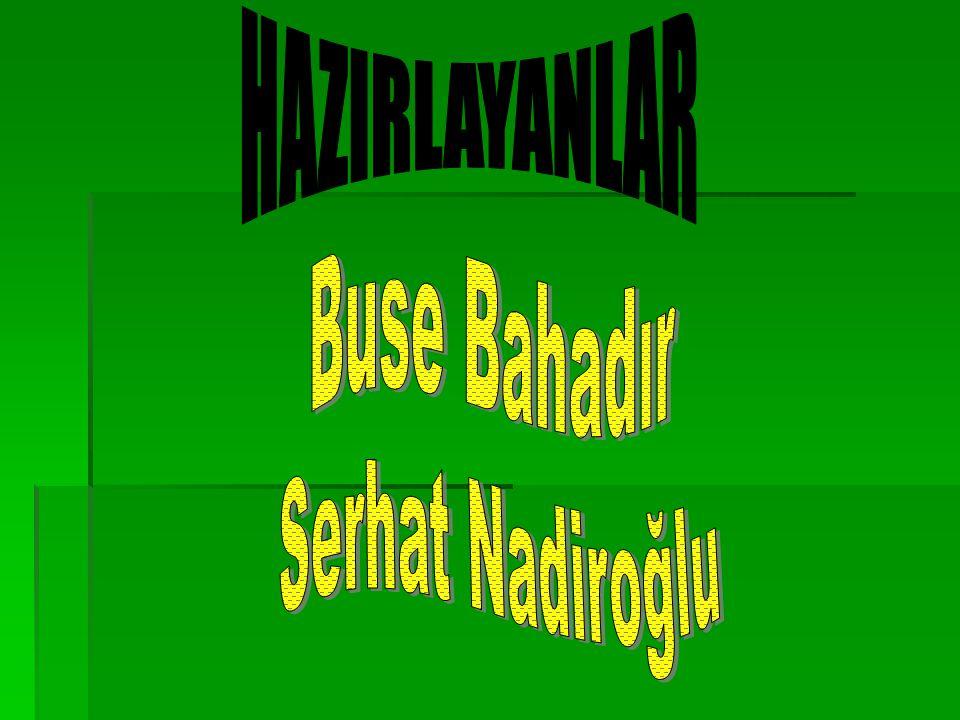 HAZIRLAYANLAR Buse Bahadır Serhat Nadiroğlu