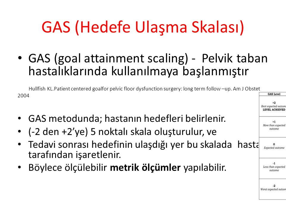 GAS (Hedefe Ulaşma Skalası)