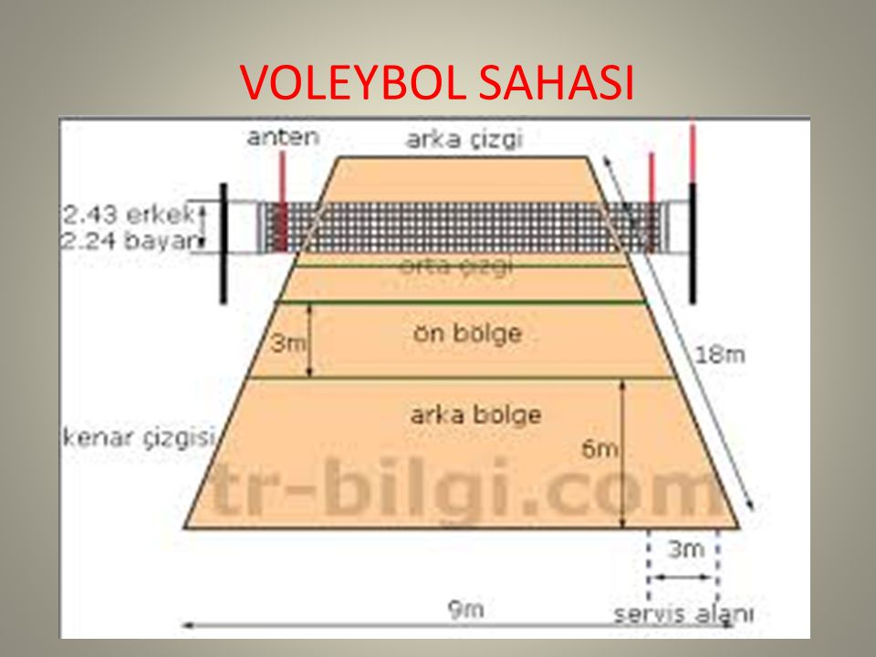 VOLEYBOL SAHASI
