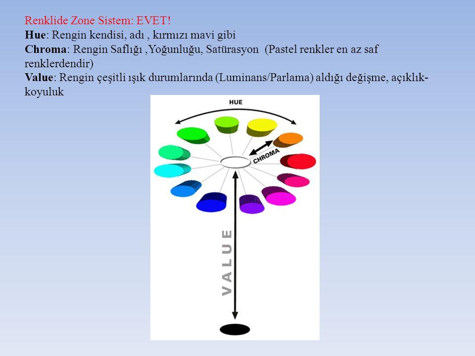 Renklide Zone Sistem: EVET