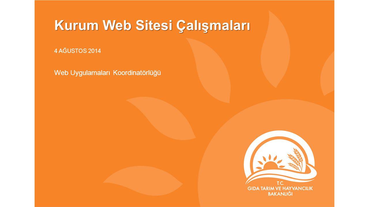 Kurum Web Sitesi Çalışmaları