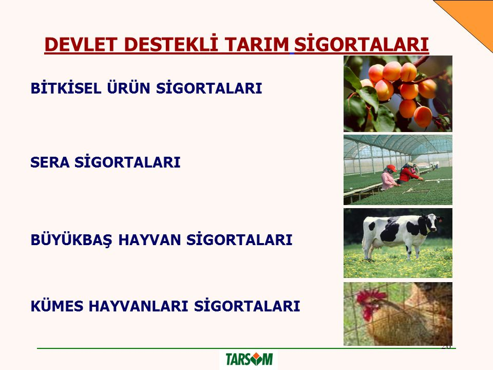 DEVLET DESTEKLİ TARIM SİGORTALARI