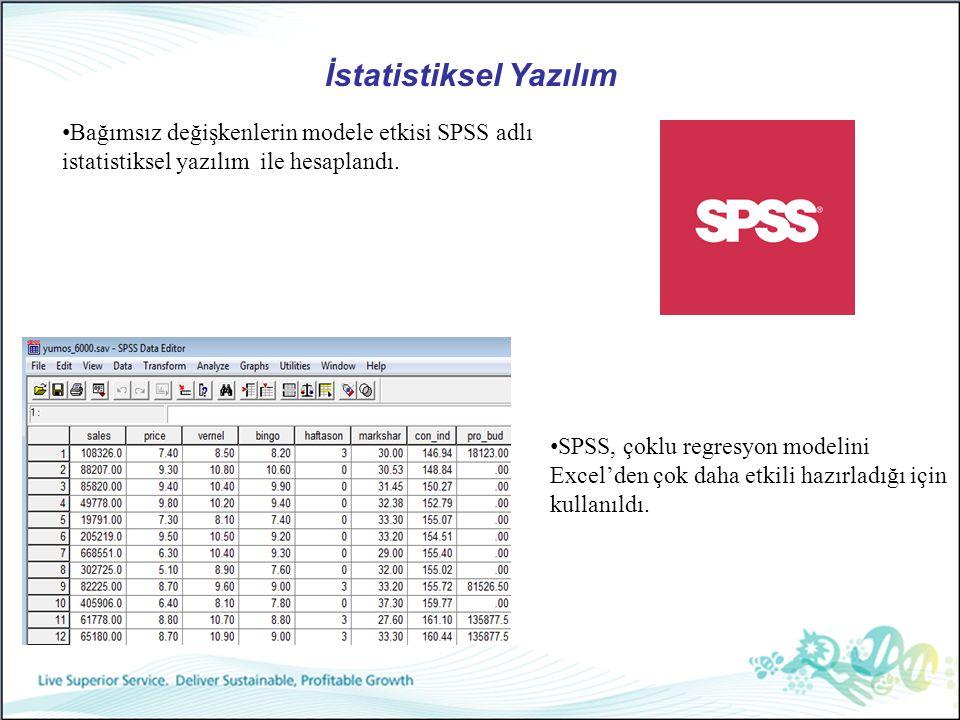 İstatistiksel Yazılım