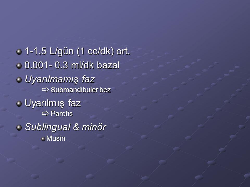 1-1.5 L/gün (1 cc/dk) ort. 0.001- 0.3 ml/dk bazal Uyarılmamış faz