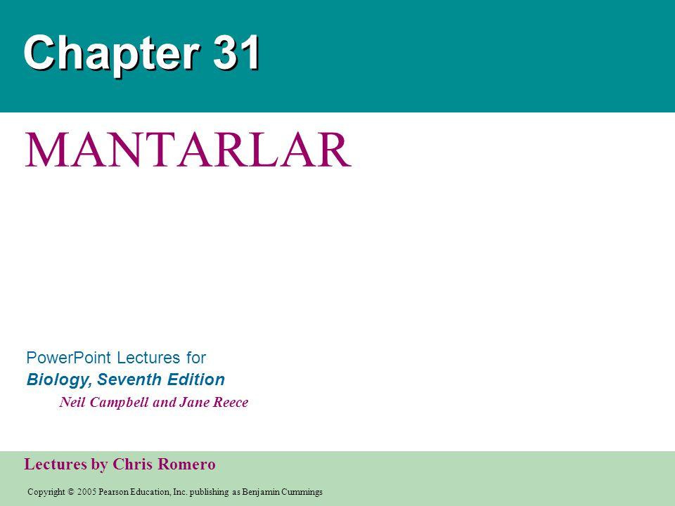 Chapter 31 MANTARLAR