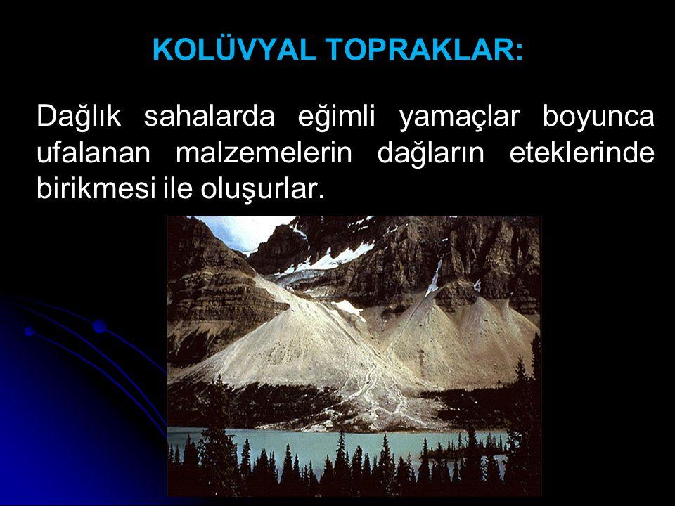 KOLÜVYAL TOPRAKLAR: Dağlık sahalarda eğimli yamaçlar boyunca ufalanan malzemelerin dağların eteklerinde birikmesi ile oluşurlar.