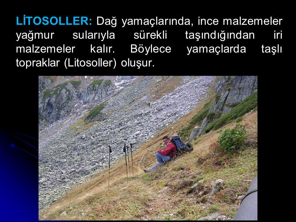 LİTOSOLLER: Dağ yamaçlarında, ince malzemeler yağmur sularıyla sürekli taşındığından iri malzemeler kalır.