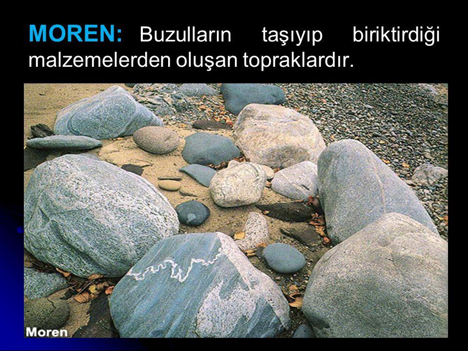 MOREN: Buzulların taşıyıp biriktirdiği malzemelerden oluşan topraklardır.