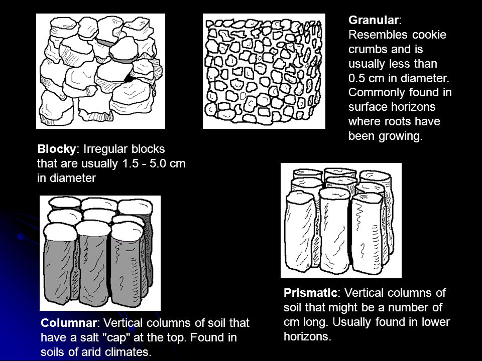 Granular: Resembles cookie crumbs and is usually less than 0