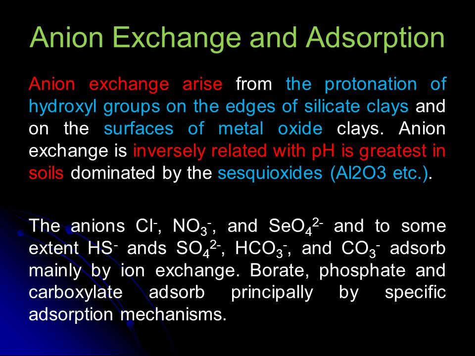 Anion Exchange and Adsorption