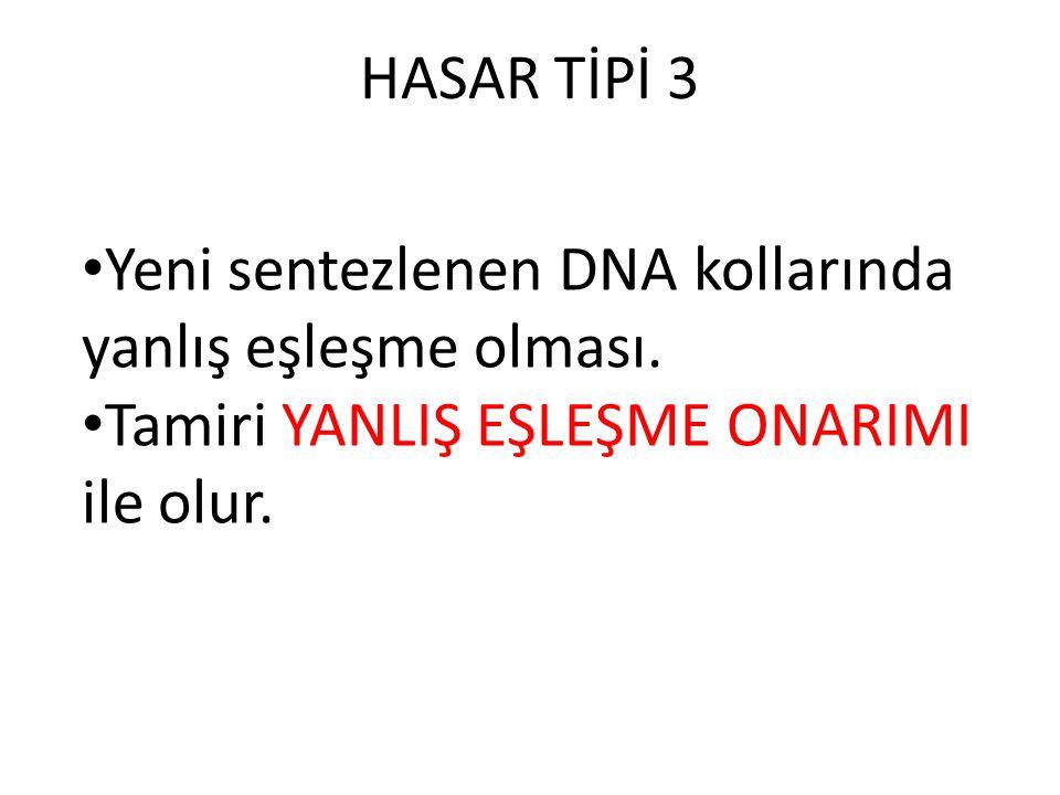 HASAR TİPİ 3 Yeni sentezlenen DNA kollarında yanlış eşleşme olması.