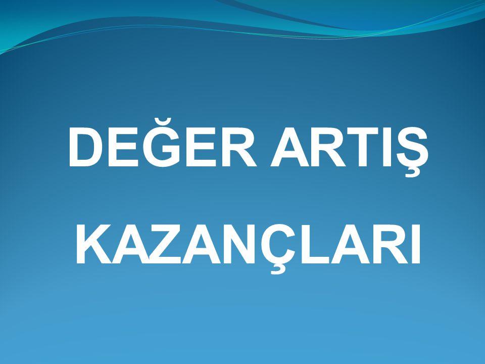 DEĞER ARTIŞ KAZANÇLARI