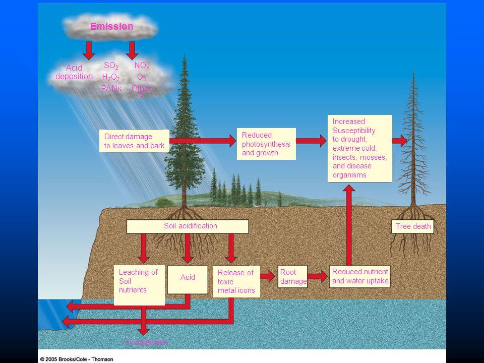 Emission Acid deposition SO2 H2O2 PANs NOX O3 Others Direct damage