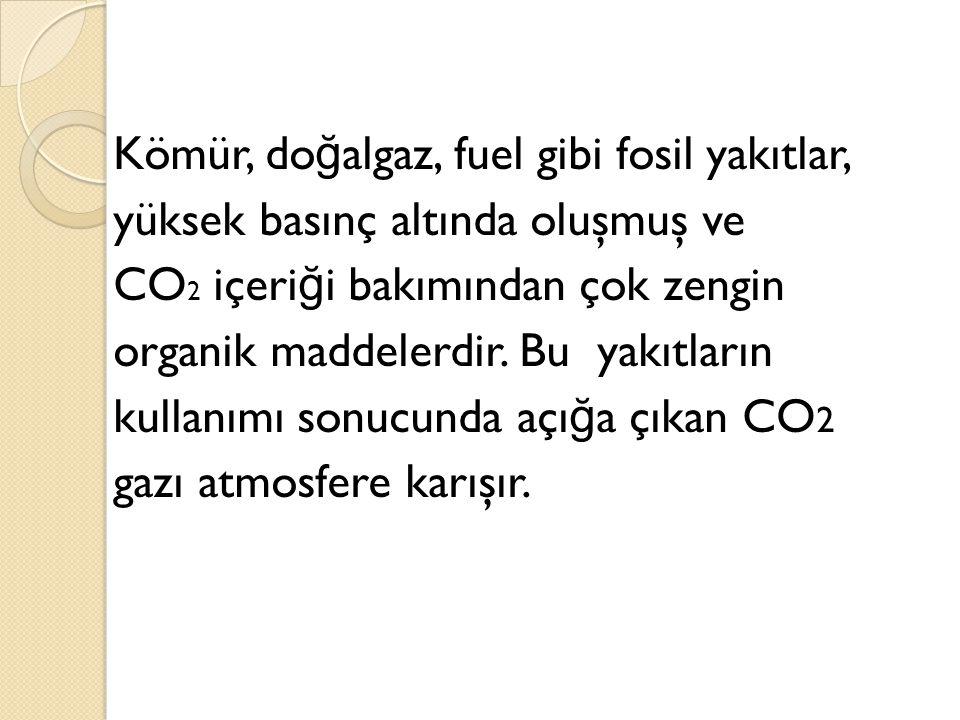 Kömür, doğalgaz, fuel gibi fosil yakıtlar, yüksek basınç altında oluşmuş ve CO2 içeriği bakımından çok zengin organik maddelerdir.