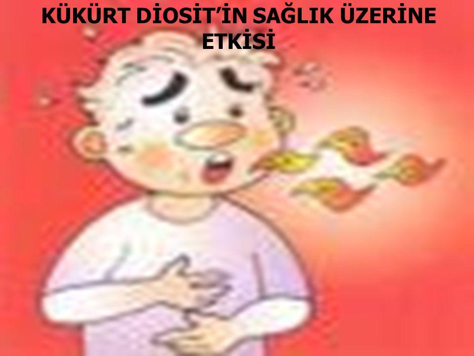 KÜKÜRT DİOSİT'İN SAĞLIK ÜZERİNE ETKİSİ