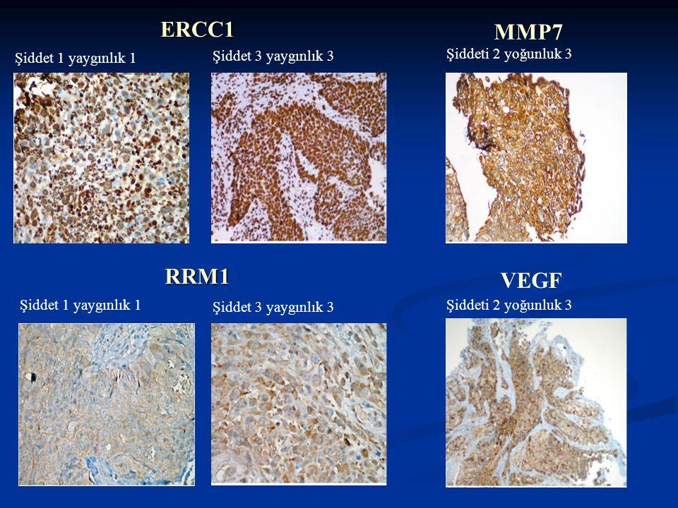 ERCC1 MMP7 RRM1 VEGF Şiddet 1 yaygınlık 1 Şiddet 3 yaygınlık 3