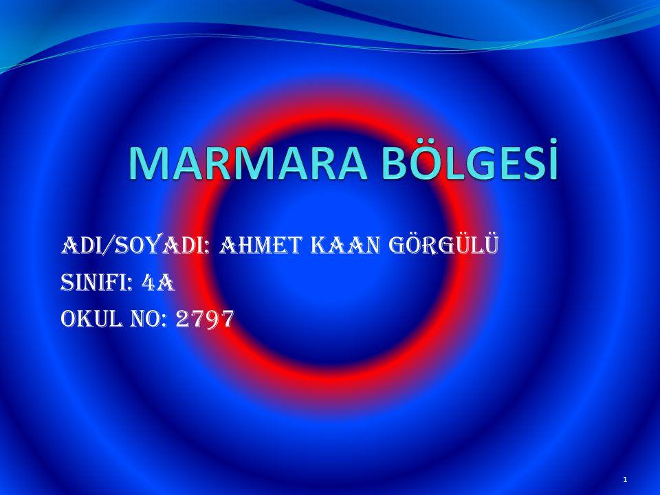 AdI/SoyadI: Ahmet Kaan GÖRGÜLÜ SINIFI: 4A Okul No: 2797