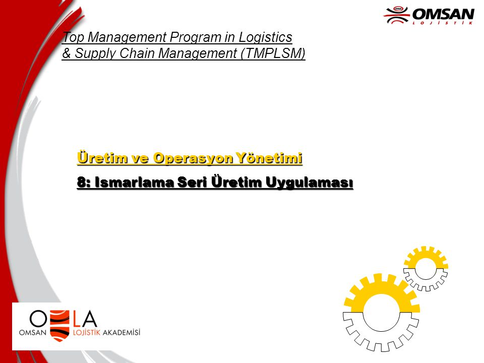 Top Management Program in Logistics