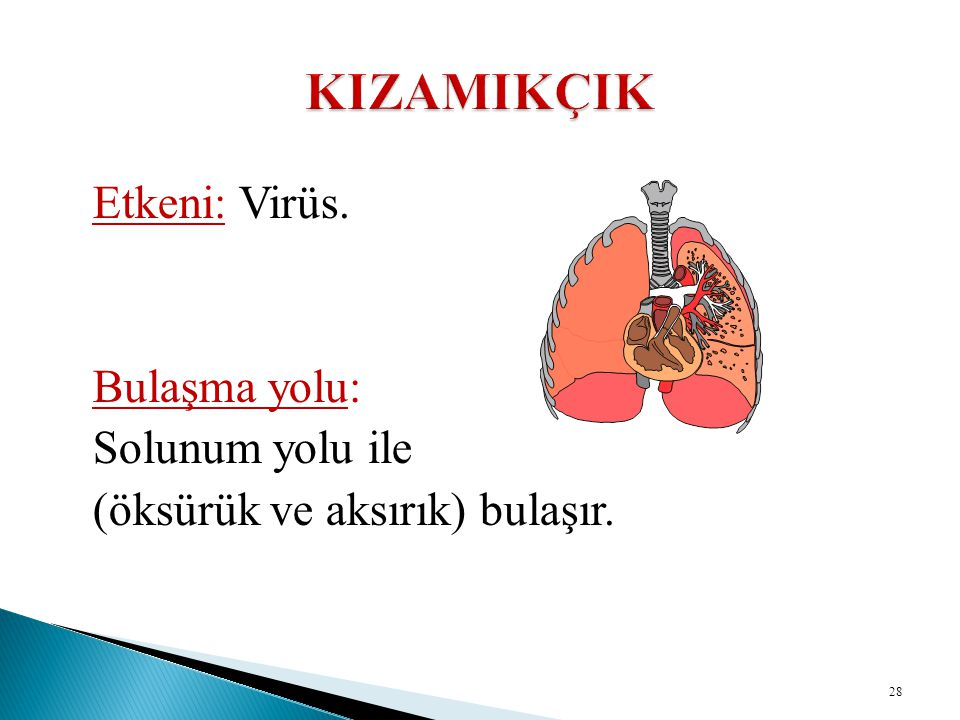 KIZAMIKÇIK Etkeni: Virüs. Bulaşma yolu: Solunum yolu ile
