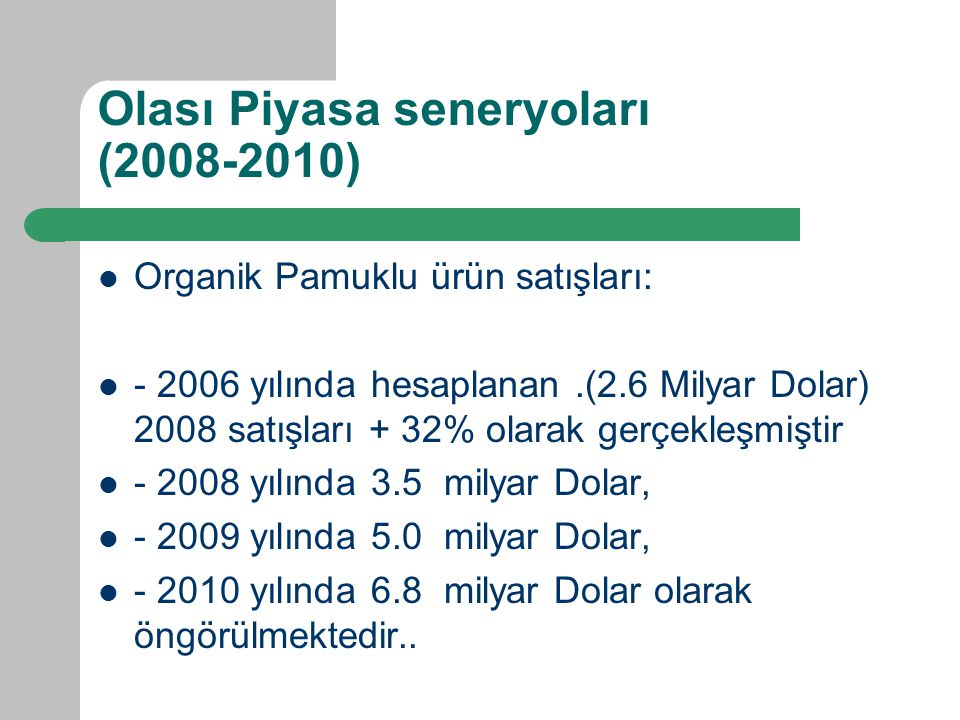 Olası Piyasa seneryoları (2008-2010)