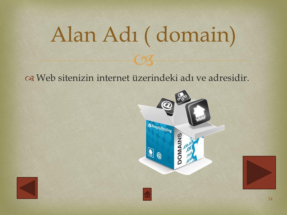 Alan Adı ( domain) Web sitenizin internet üzerindeki adı ve adresidir.