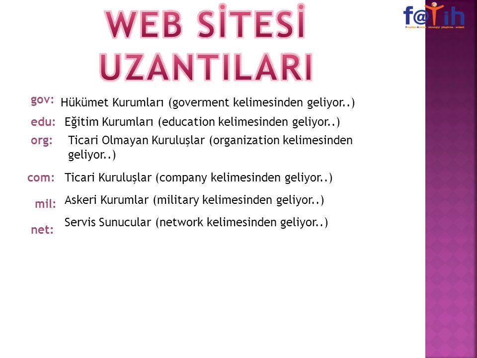 WEB SİTESİ UZANTILARI gov: