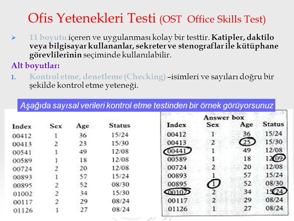 Ofis Yetenekleri Testi (OST Office Skills Test)