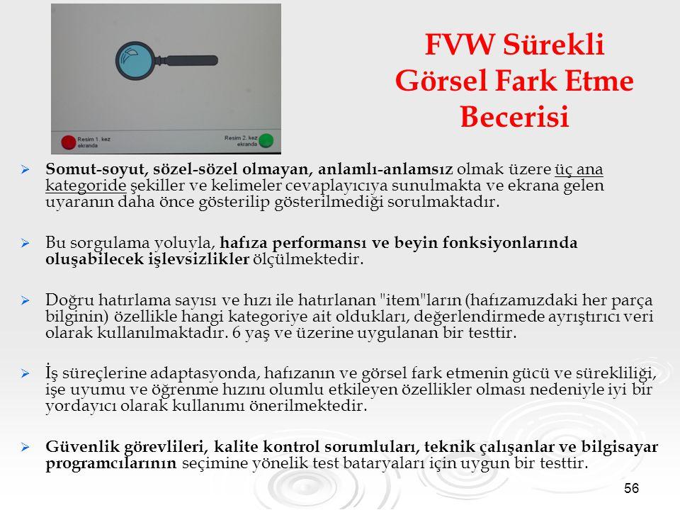 FVW Sürekli Görsel Fark Etme Becerisi